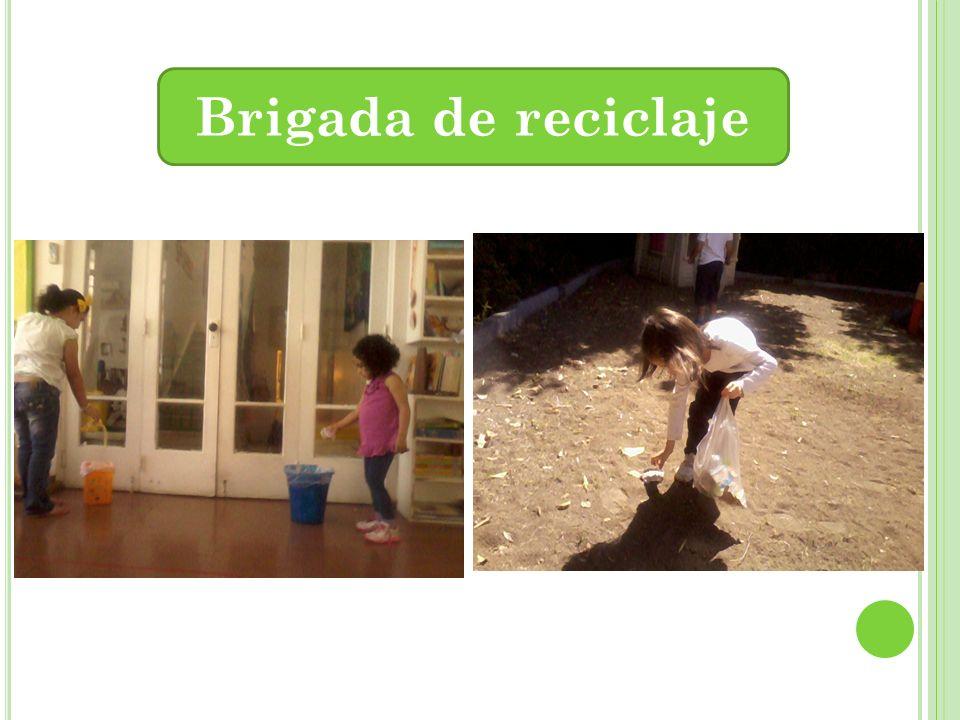 Brigada de reciclaje