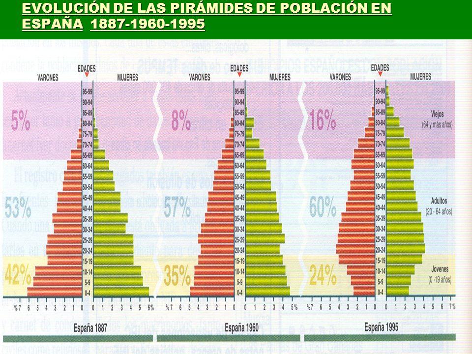 EVOLUCIÓN DE LAS PIRÁMIDES DE POBLACIÓN EN ESPAÑA 1887-1960-1995