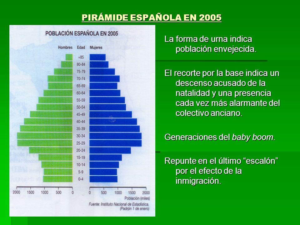PIRÁMIDE ESPAÑOLA EN 2005La forma de urna indica población envejecida.