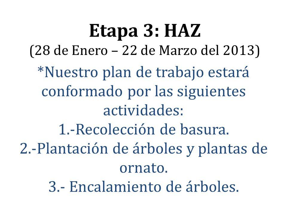 Etapa 3: HAZ (28 de Enero – 22 de Marzo del 2013)