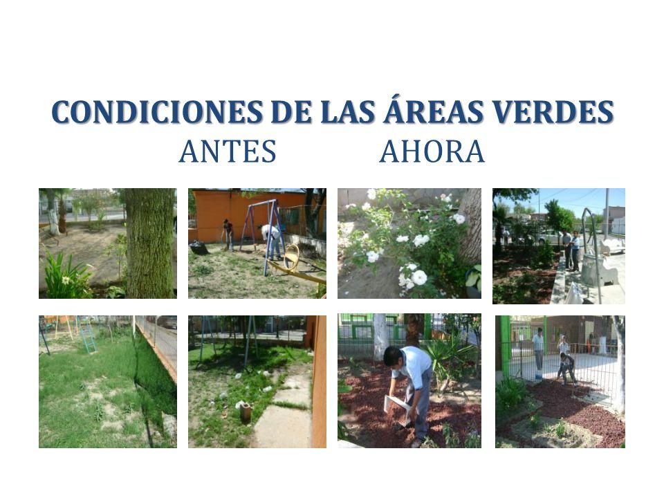 CONDICIONES DE LAS ÁREAS VERDES ANTES AHORA