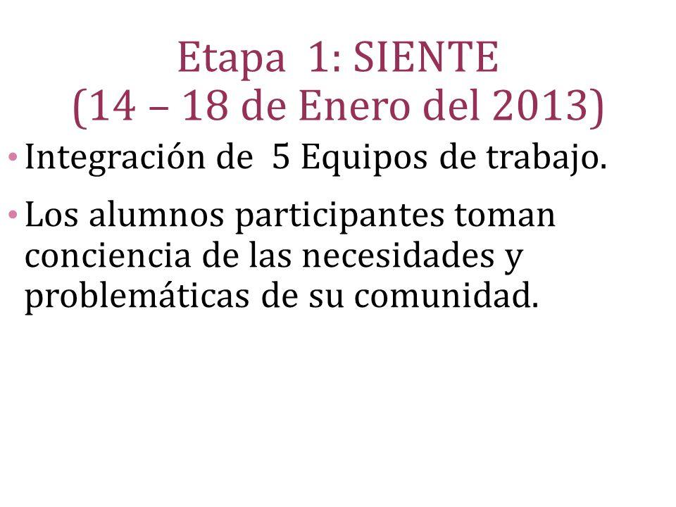 Etapa 1: SIENTE (14 – 18 de Enero del 2013)