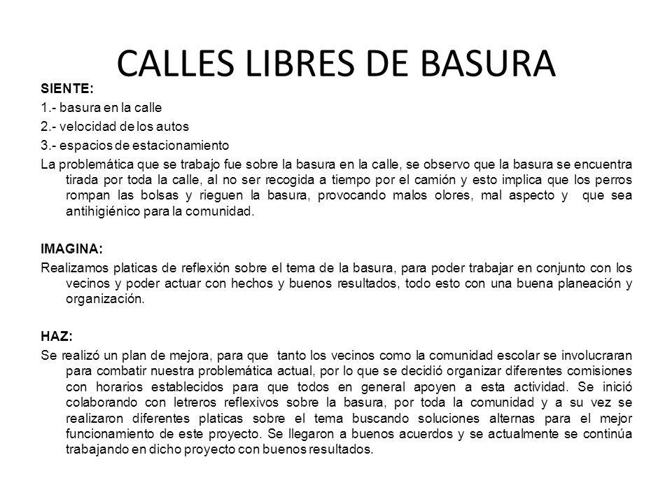 CALLES LIBRES DE BASURA