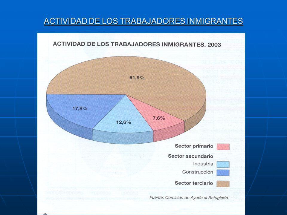 ACTIVIDAD DE LOS TRABAJADORES INMIGRANTES