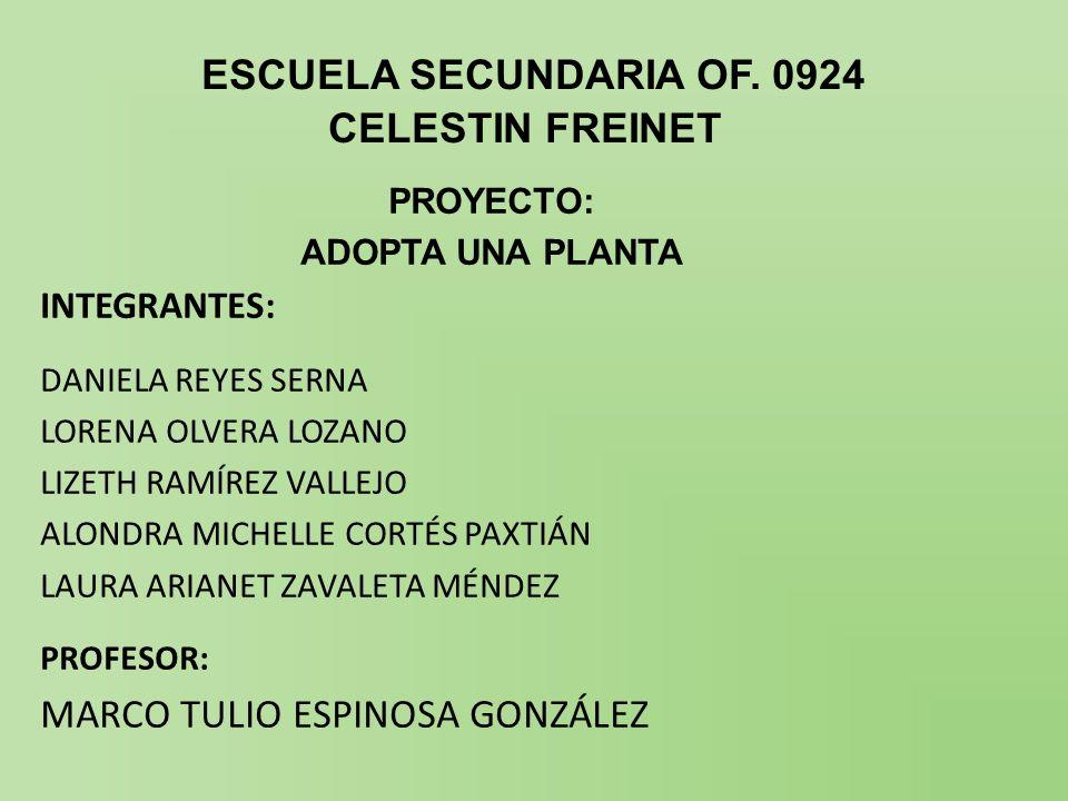 ESCUELA SECUNDARIA OF. 0924 CELESTIN FREINET