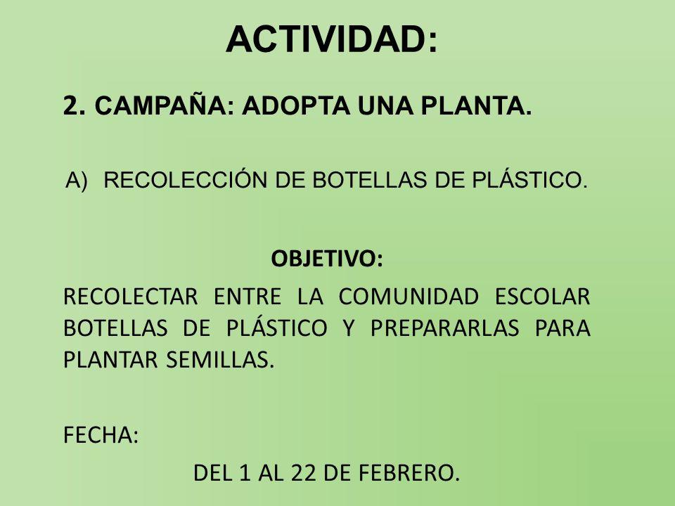 RECOLECCIÓN DE BOTELLAS DE PLÁSTICO.
