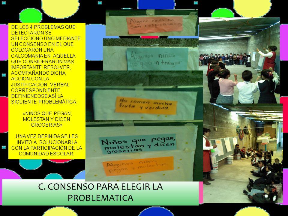 C. CONSENSO PARA ELEGIR LA PROBLEMATICA
