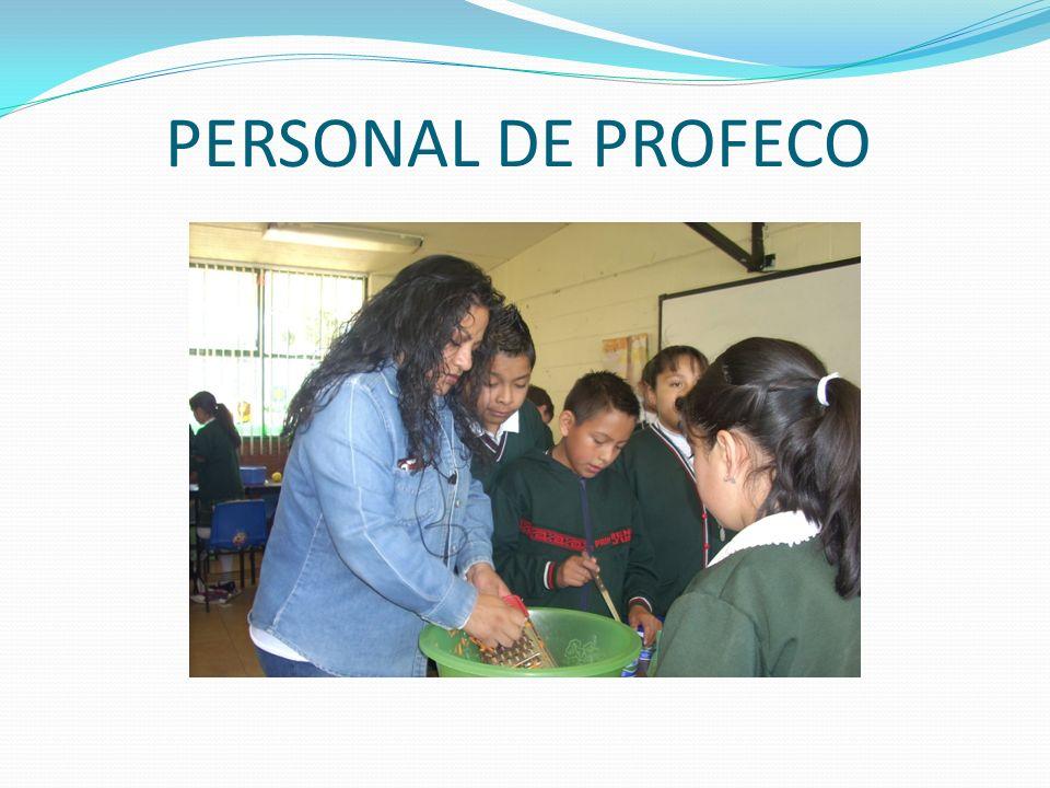 PERSONAL DE PROFECO