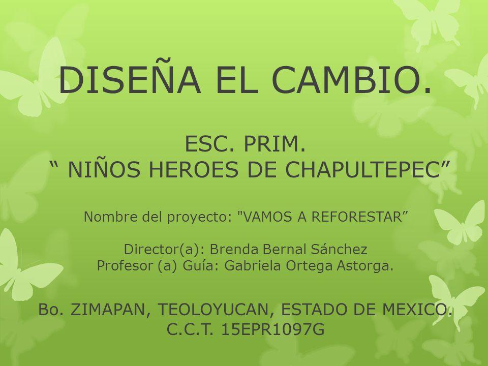 DISEÑA EL CAMBIO. ESC. PRIM