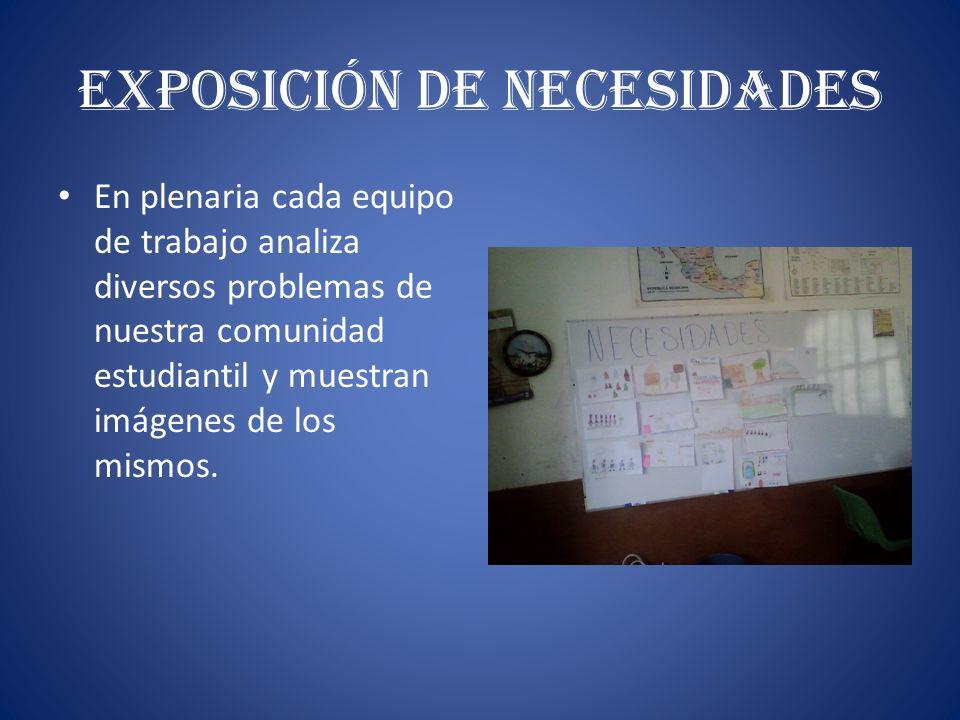 Exposición de Necesidades
