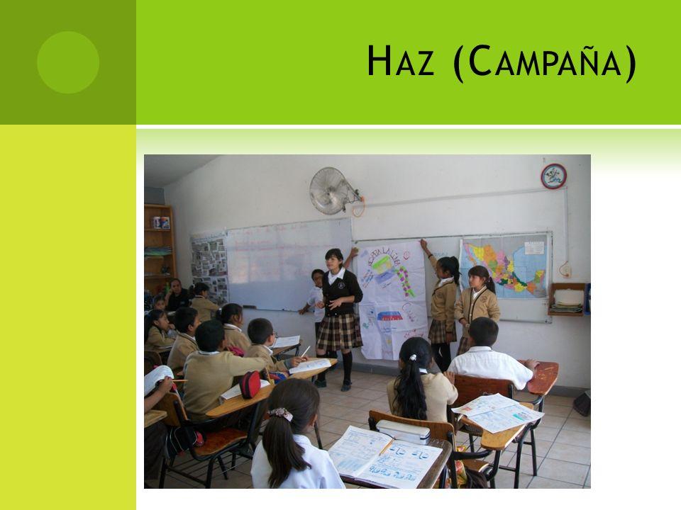 Haz (Campaña)