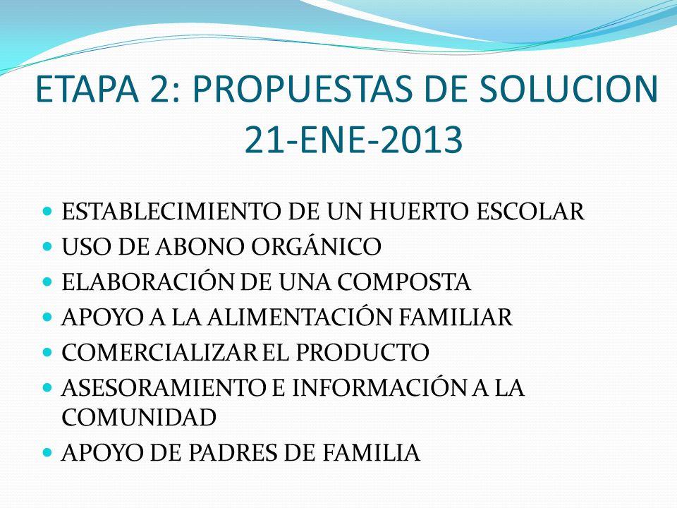 ETAPA 2: PROPUESTAS DE SOLUCION 21-ENE-2013