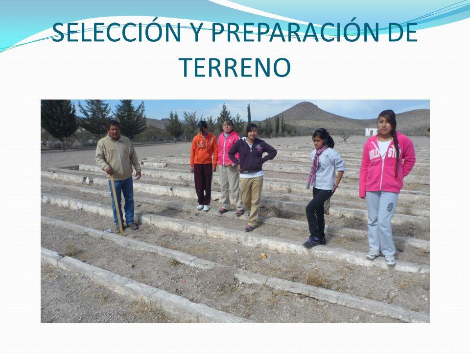 SELECCIÓN Y PREPARACIÓN DE TERRENO