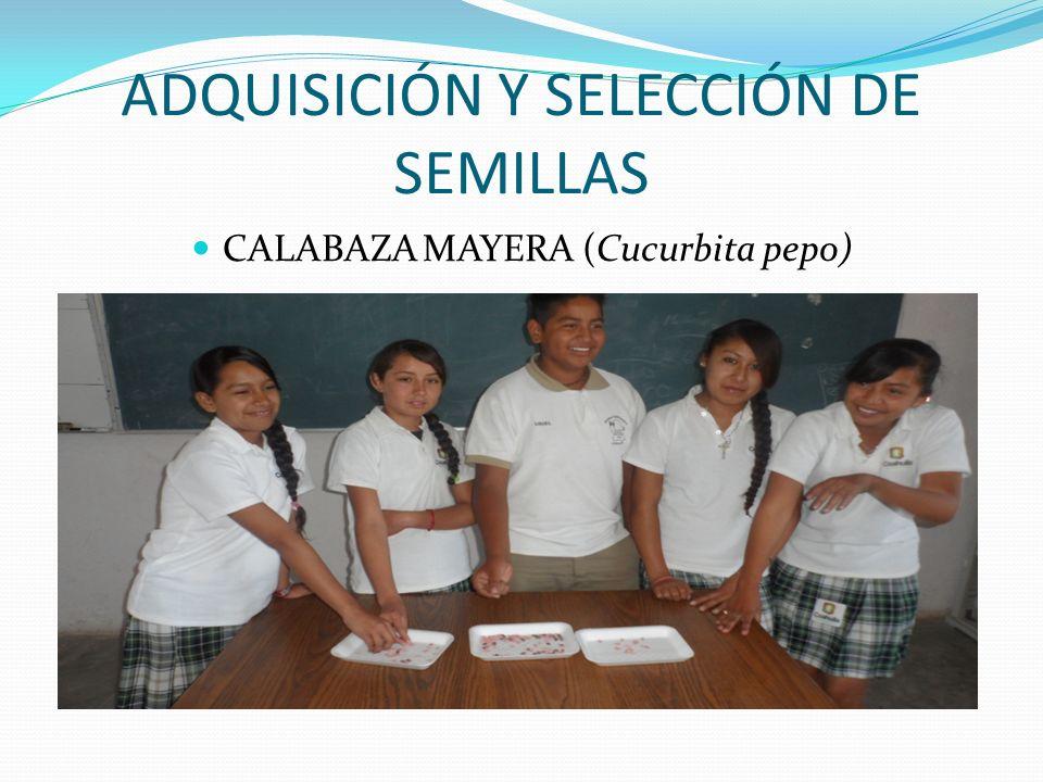 ADQUISICIÓN Y SELECCIÓN DE SEMILLAS
