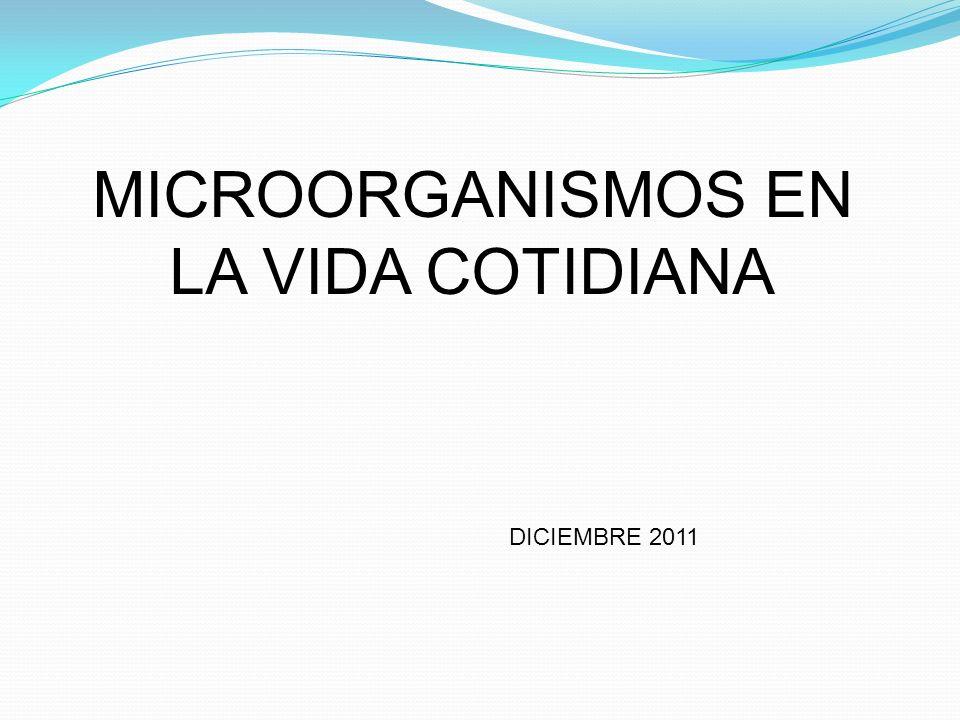 MICROORGANISMOS EN LA VIDA COTIDIANA
