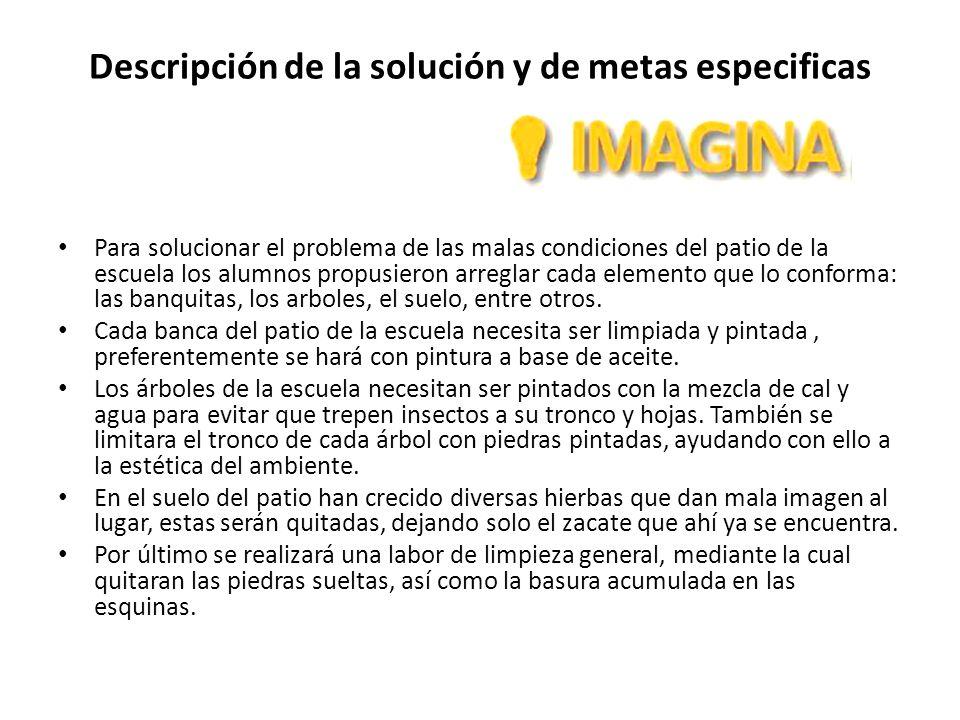 Descripción de la solución y de metas especificas