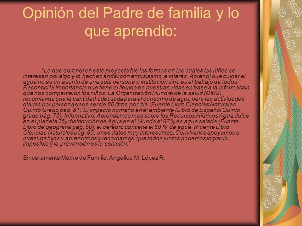 Opinión del Padre de familia y lo que aprendio: