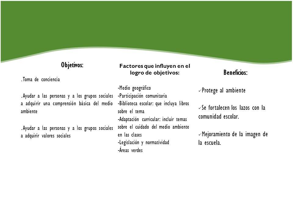 Factores que influyen en el logro de objetivos: