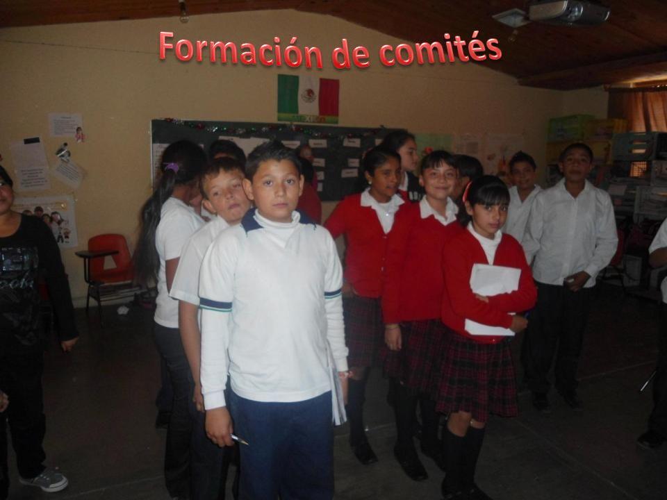 Formación de comités