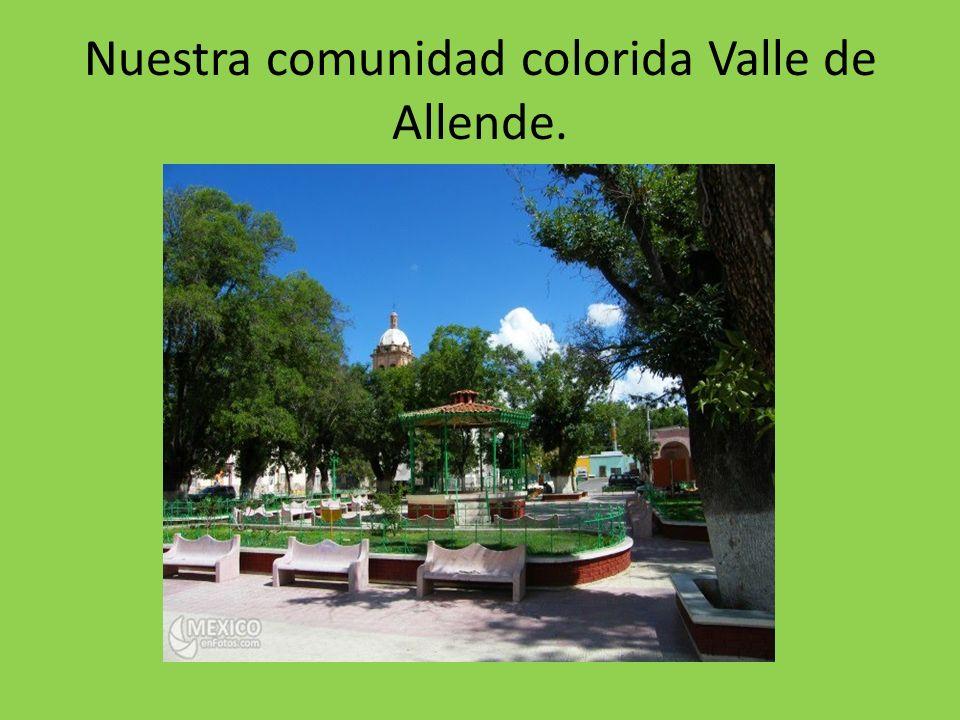 Nuestra comunidad colorida Valle de Allende.