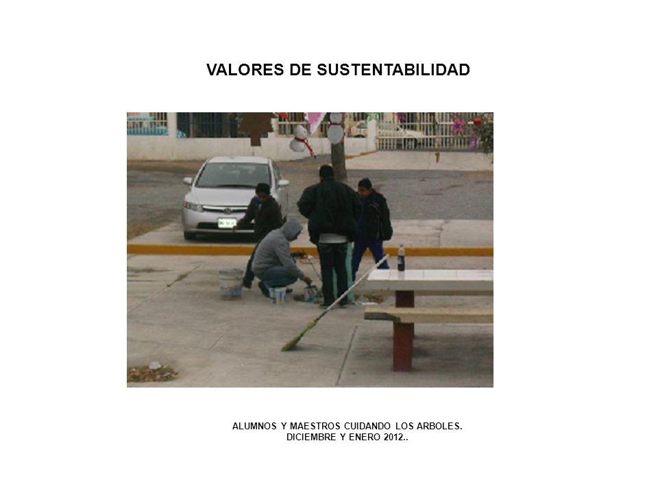 VALORES DE SUSTENTABILIDAD ALUMNOS Y MAESTROS CUIDANDO LOS ARBOLES.