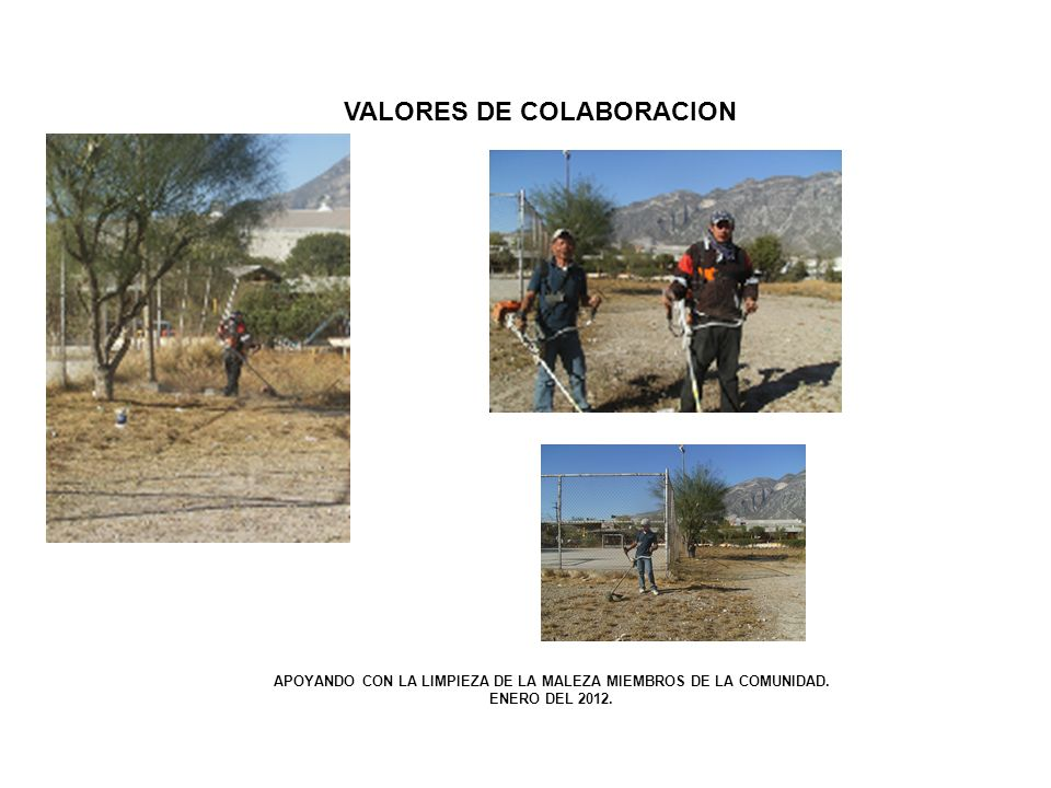 VALORES DE COLABORACION
