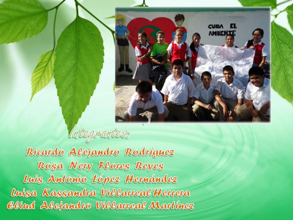 Integrantes: Ricardo Alejandro Rodríguez Rosa Nery Flores Reyes