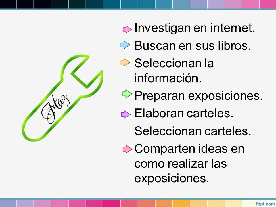 Investigan en internet. Buscan en sus libros