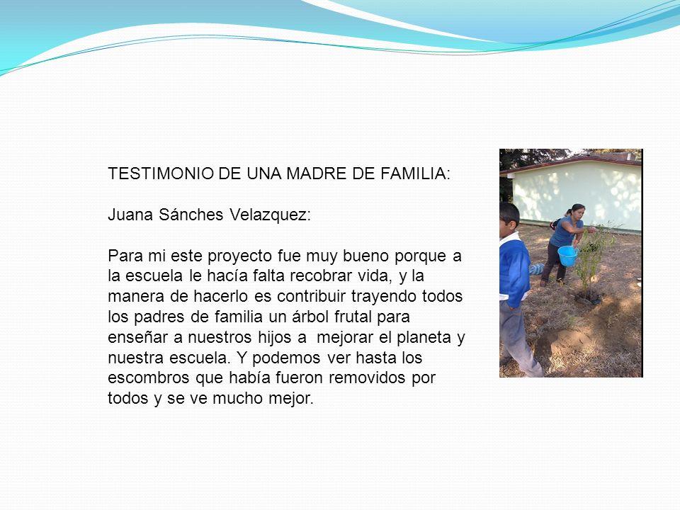 TESTIMONIO DE UNA MADRE DE FAMILIA: