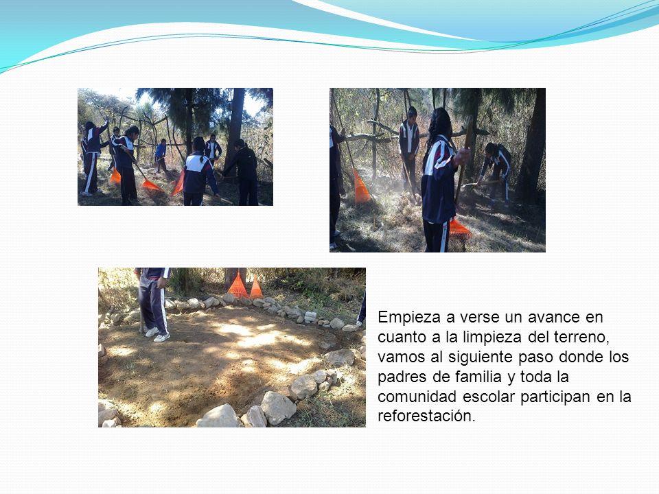 Empieza a verse un avance en cuanto a la limpieza del terreno, vamos al siguiente paso donde los padres de familia y toda la comunidad escolar participan en la reforestación.