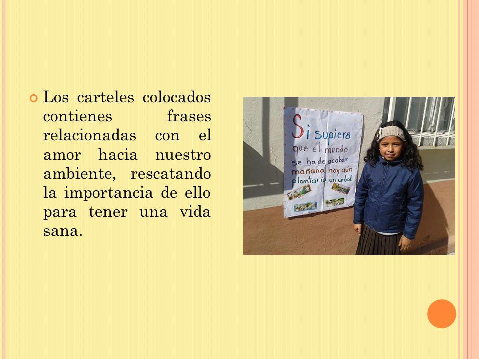 Los carteles colocados contienes frases relacionadas con el amor hacia nuestro ambiente, rescatando la importancia de ello para tener una vida sana.