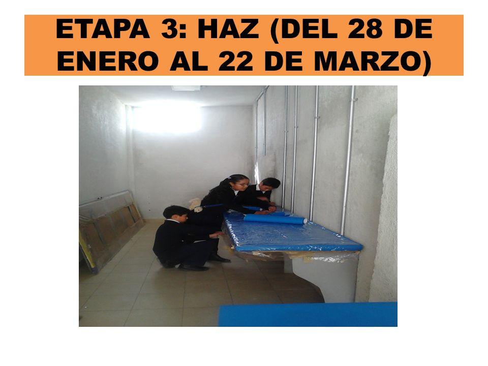 ETAPA 3: HAZ (DEL 28 DE ENERO AL 22 DE MARZO)