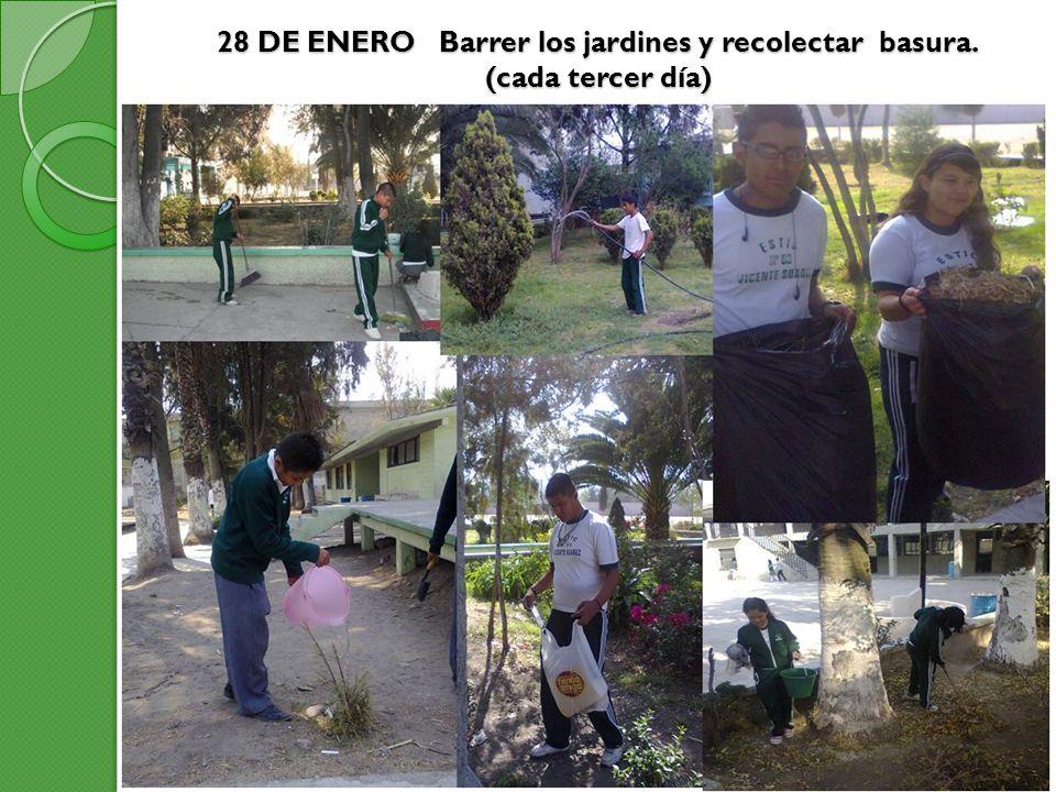 28 DE ENERO Barrer los jardines y recolectar basura. (cada tercer día)