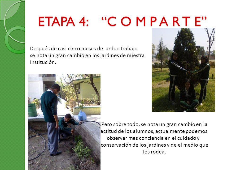 ETAPA 4: C O M P A R T E Después de casi cinco meses de arduo trabajo. se nota un gran cambio en los jardines de nuestra.