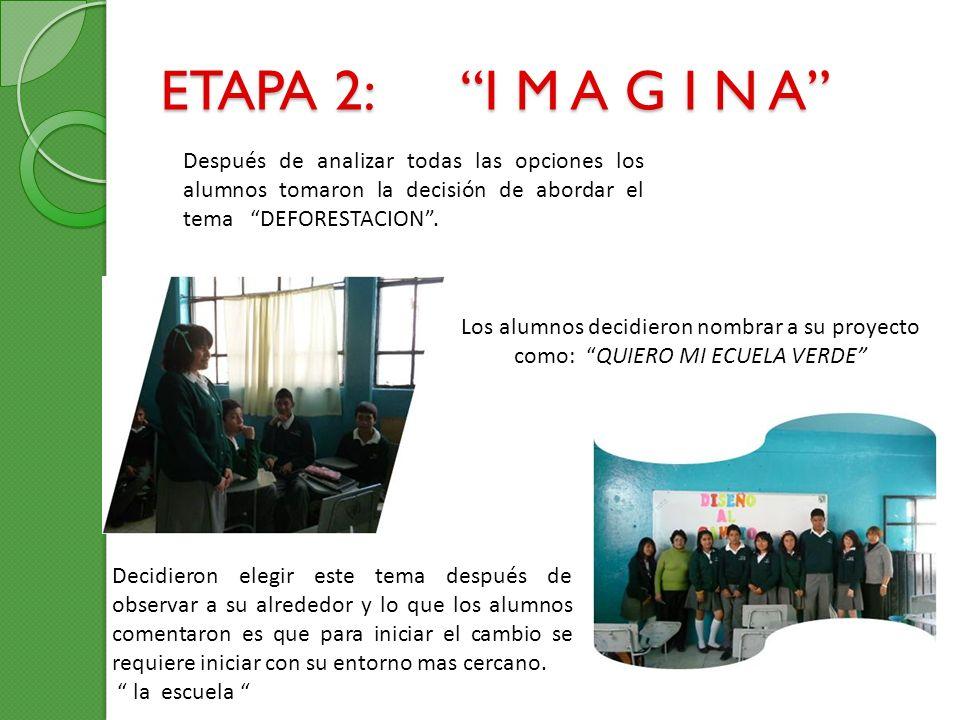 ETAPA 2: I M A G I N A Después de analizar todas las opciones los alumnos tomaron la decisión de abordar el tema DEFORESTACION .