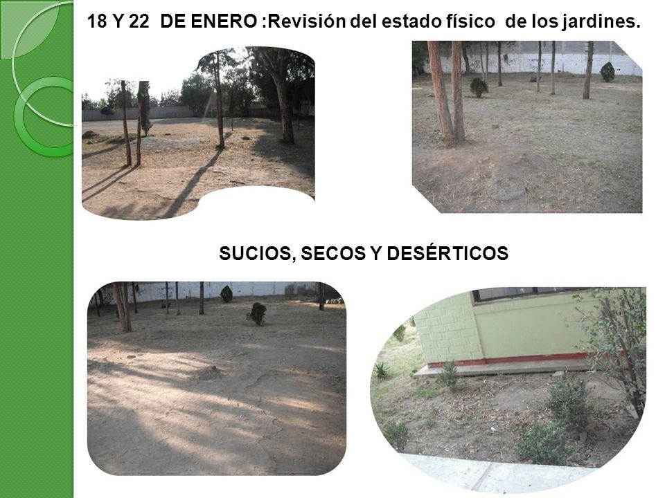 18 Y 22 DE ENERO :Revisión del estado físico de los jardines.