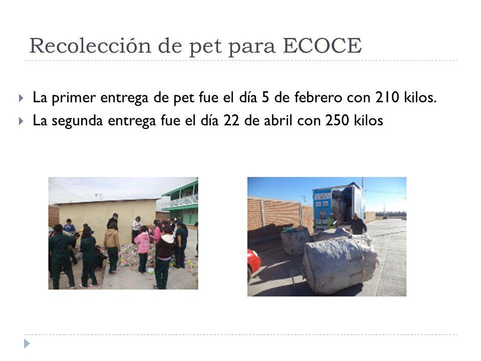 Recolección de pet para ECOCE