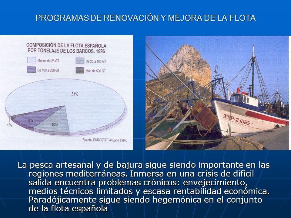 PROGRAMAS DE RENOVACIÓN Y MEJORA DE LA FLOTA