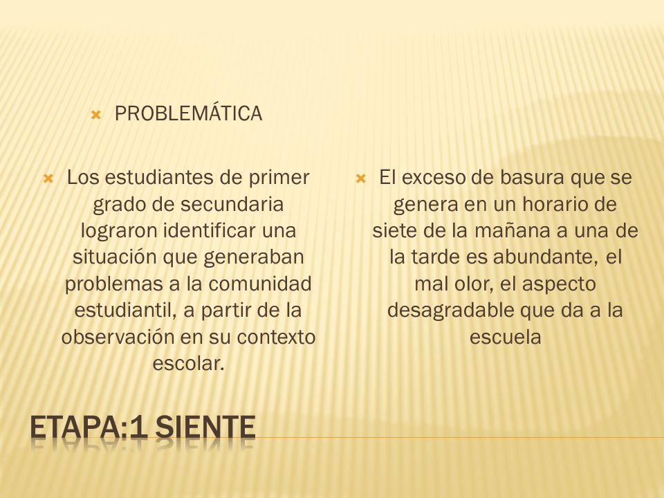 ETAPA:1 SIENTE PROBLEMÁTICA