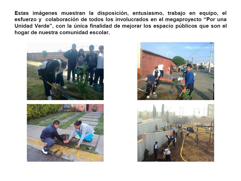 Estas imágenes muestran la disposición, entusiasmo, trabajo en equipo, el esfuerzo y colaboración de todos los involucrados en el megaproyecto Por una Unidad Verde , con la única finalidad de mejorar los espacio públicos que son el hogar de nuestra comunidad escolar.