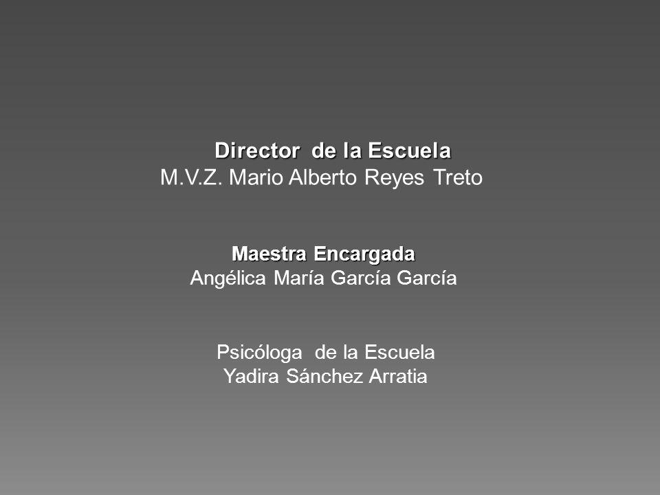 M.V.Z. Mario Alberto Reyes Treto