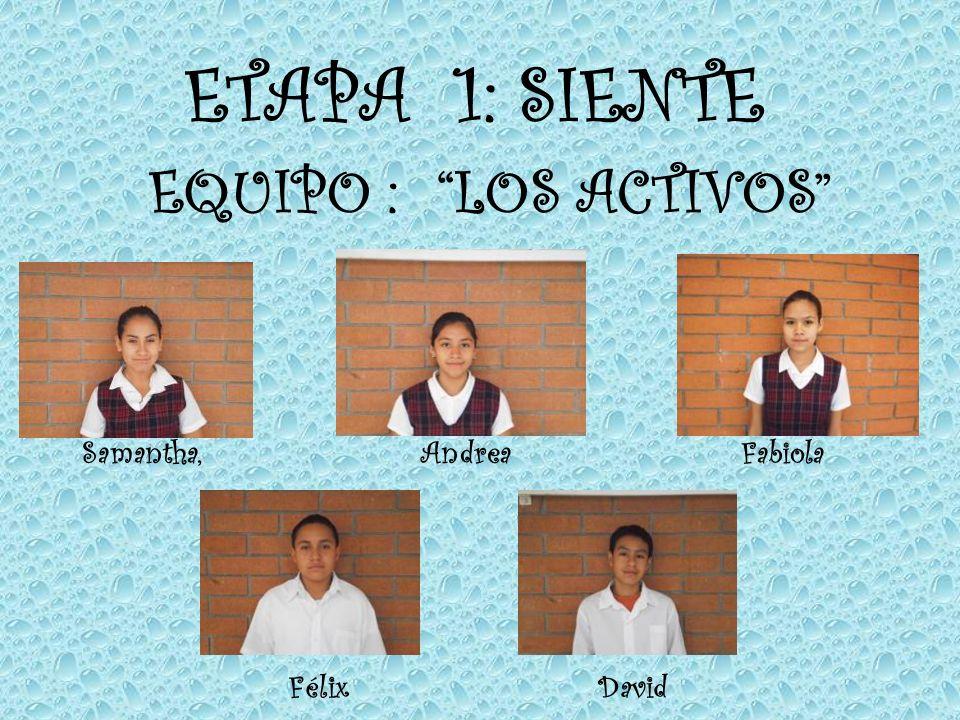 ETAPA 1: SIENTE EQUIPO : LOS ACTIVOS Samantha, Andrea Fabiola