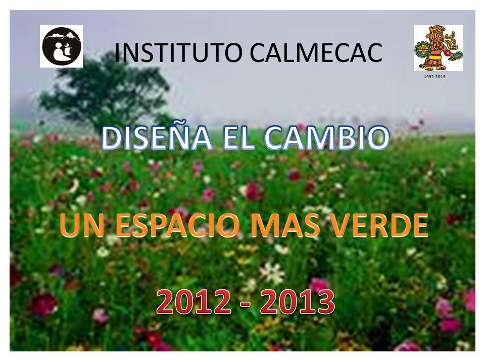 DISEÑA EL CAMBIO UN ESPACIO MAS VERDE 2012 - 2013