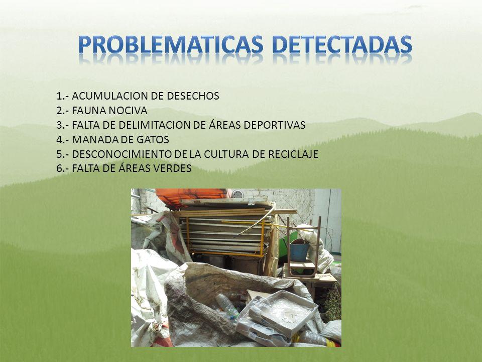 PROBLEMATICAS DETECTADAS