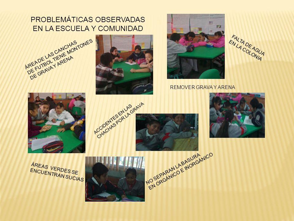 PROBLEMÁTICAS OBSERVADAS EN LA ESCUELA Y COMUNIDAD