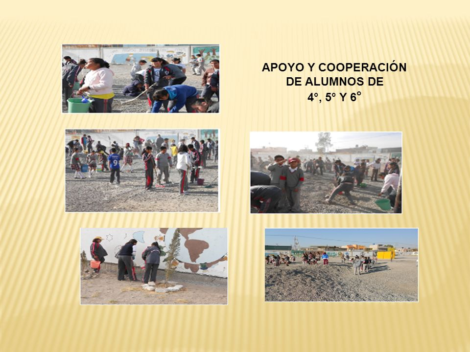 APOYO Y COOPERACIÓN DE ALUMNOS DE 4°, 5° Y 6°