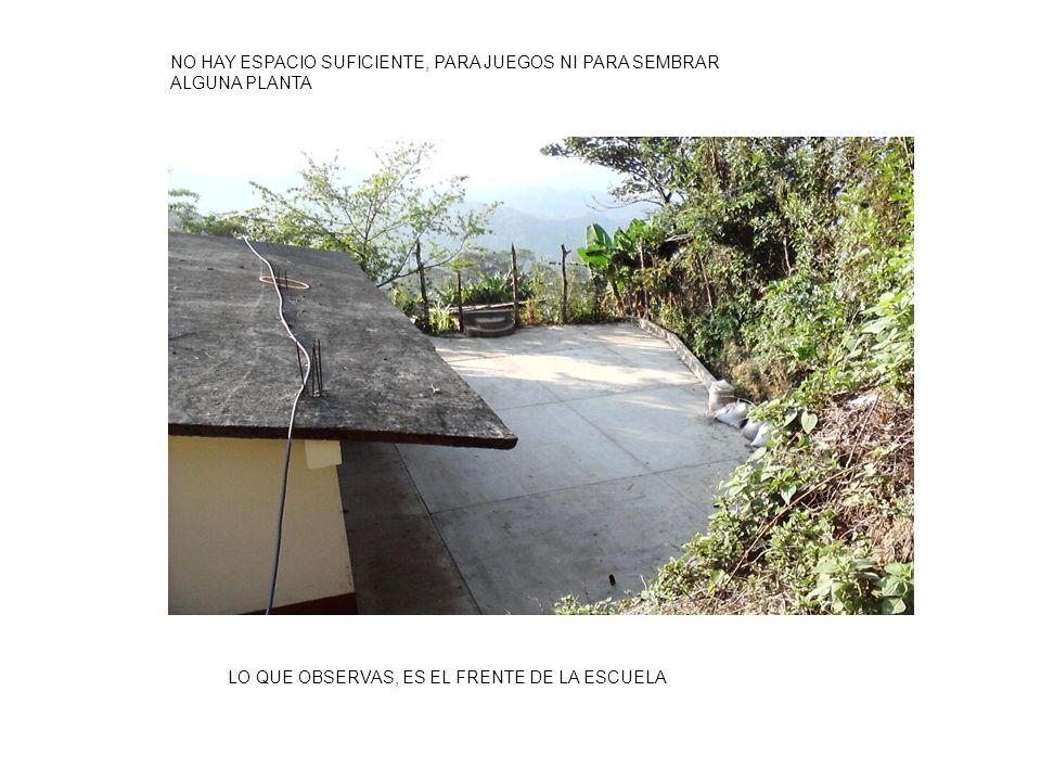 NO HAY ESPACIO SUFICIENTE, PARA JUEGOS NI PARA SEMBRAR ALGUNA PLANTA