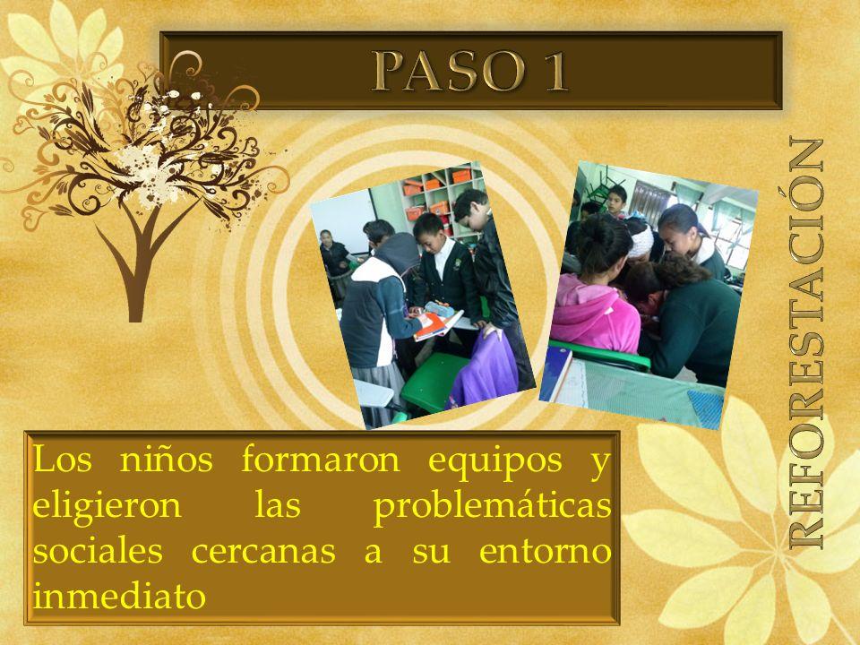 PASO 1 REFORESTACIÓN.