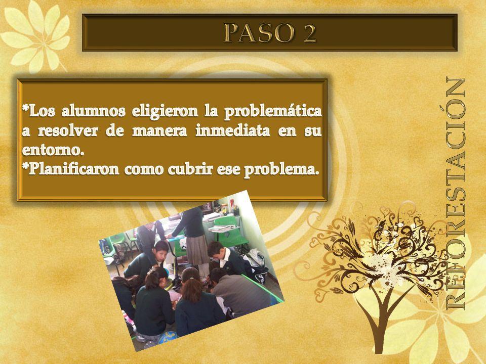 PASO 2 REFORESTACIÓN. *Los alumnos eligieron la problemática a resolver de manera inmediata en su entorno.
