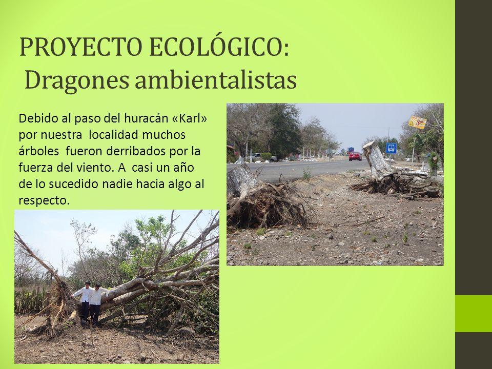 PROYECTO ECOLÓGICO: Dragones ambientalistas